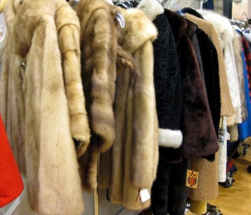 Modern Vintage Chicago - Furs