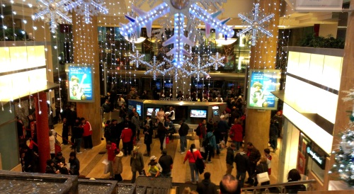 Black Friday Shoppers - Watertower Place