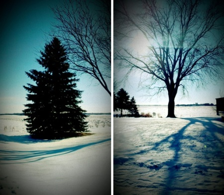 Sunshine & Snow in Minnesota